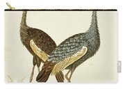 Balearica Regulorum Grey Crowned Crane, Robert Jacob Gordon, 1777 - 1786 Carry-all Pouch
