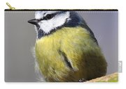 Blue Tit Carry-all Pouch