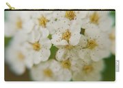 Bridal Veil Spirea Carry-all Pouch