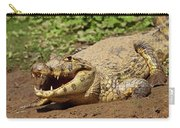 Caiman Crawling Into Yakuma River Carry-all Pouch