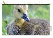 Canadian Goose Chick Carry-all Pouch