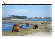 Cattle Scottish Highlanders, Zuid Kennemerland, Netherlands Carry-all Pouch