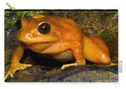 Chilean Tomato Frog Carry-all Pouch