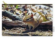 Chipmunk At Heckrodt Carry-all Pouch