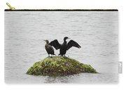 Cormorants Port Jefferson New York Carry-all Pouch