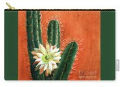 Desert Delight Carry-all Pouch