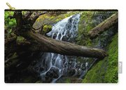 Fern Falls At Jedediah Redwoods State Park Carry-all Pouch