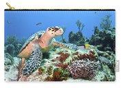 Hawksbill Turtle Feeding On Sponge Carry-all Pouch by Karen Doody