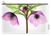 Hellebore Flowers, X-ray Carry-all Pouch
