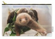 Hoffmanns Two-toed Sloth Choloepus Carry-all Pouch by Suzi Eszterhas