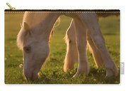 In The Warm Evening Sunlight Carry-all Pouch