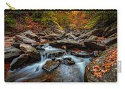 Kaaterskill Creek Carry-all Pouch