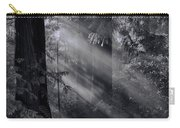 Let There Be Light Carry-all Pouch