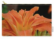 Lilly  Carry-all Pouch