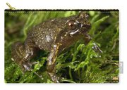 Mehu�n Green Frog Carry-all Pouch
