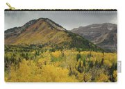 Mount Timpanogos Fall Colors Carry-all Pouch