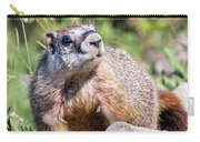 Mr. Marmot Carry-all Pouch