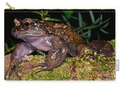 Noras Spiny Chest Frog Carry-all Pouch