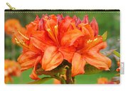 Office Art Prints Azaleas Botanical Landscape 11 Giclee Prints Baslee Troutman Carry-all Pouch