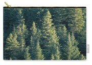 Oregon, Cascade Mountain Carry-all Pouch