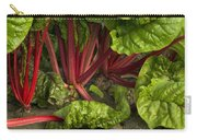 Organic Swiss Chard Carry-all Pouch