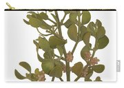 Pacific Mistletoe Carry-all Pouch