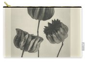 Plant Studies, 1928, Nature Series, By Karl Blossfeldt  Carry-all Pouch