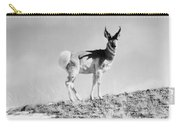 Prong-horn Antelope Carry-all Pouch