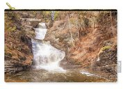 Raymondskill Falls Carry-all Pouch