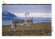 Reindeer Shedding Velvet Carry-all Pouch