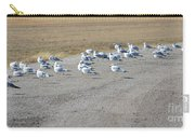 Ring Billed Gulls  Carry-all Pouch