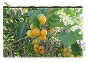 Ripening Citrus Carry-all Pouch