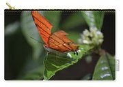 Ruddy Daggerwing Butterfly Carry-all Pouch