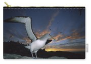 Salvins Albatross At Sunset Carry-all Pouch