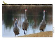 Sandhill Crane Family By Pond Carry-all Pouch