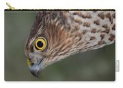 Sparrowhawk Carry-all Pouch by Gavin MacRae