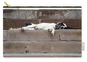 Street Dog Sleeping On Steps Carry-all Pouch