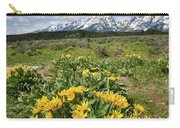 Teton Balsam Root Carry-all Pouch