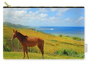 Viti Levu, Coral Coast Carry-all Pouch