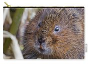 Water Vole Carry-all Pouch