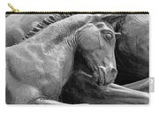 Wild Mustang Statue I V Carry-all Pouch
