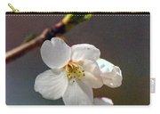2008 Springtime  6365  Carry-all Pouch