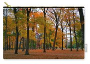 2015 Fall Colors - Washington Crossing State Park-1 Carry-all Pouch