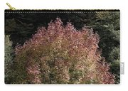 2015 Note Di Autunno Carry-all Pouch