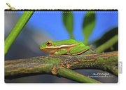 2017 11 04 Frog I Carry-all Pouch