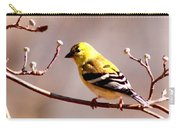 2164 - Goldfinch Carry-all Pouch