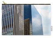 Denver Building Study Carry-all Pouch