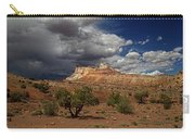San Rafael Swell Carry-all Pouch