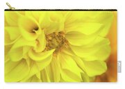 Closeup Of A Colourful Flower Carry-all Pouch
