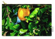 2644- Lemon Tree Carry-all Pouch